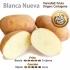 Patata Nueva Blanca